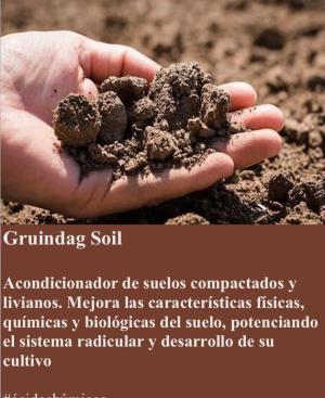 Gruindag SOIL