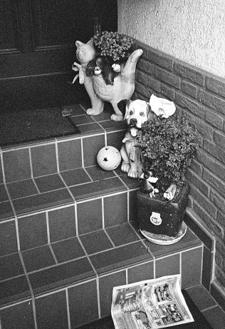 Ceramic dog, cat and flowers on the doorstep welcome visitors to this house in Linn