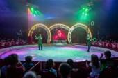 rondel-circus-7