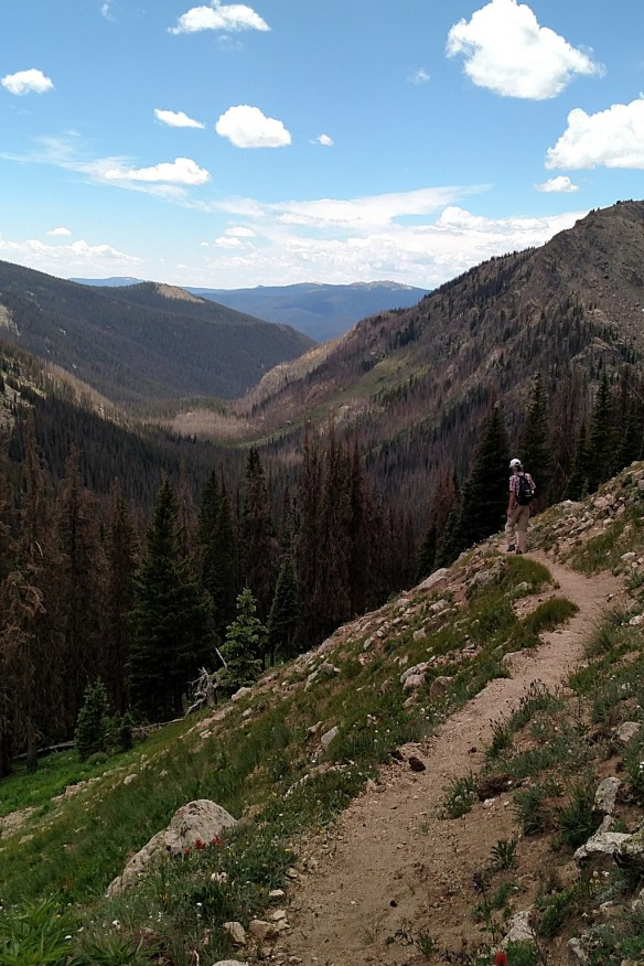 Gordon hiking; Big Meadow burn scar in the valley