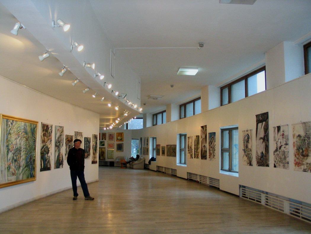 """Expozitia de la Galeria """"Apollo"""" 2009"""