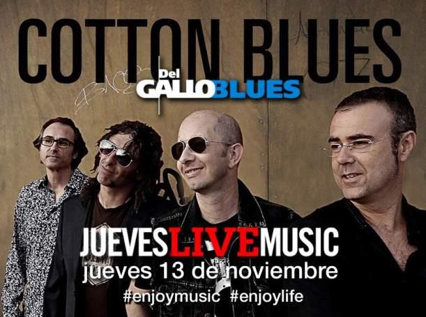 JLM-Cotton-Blues