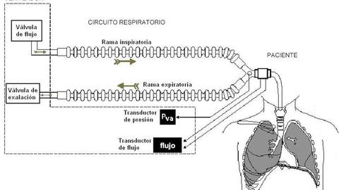 circuito respiratorio