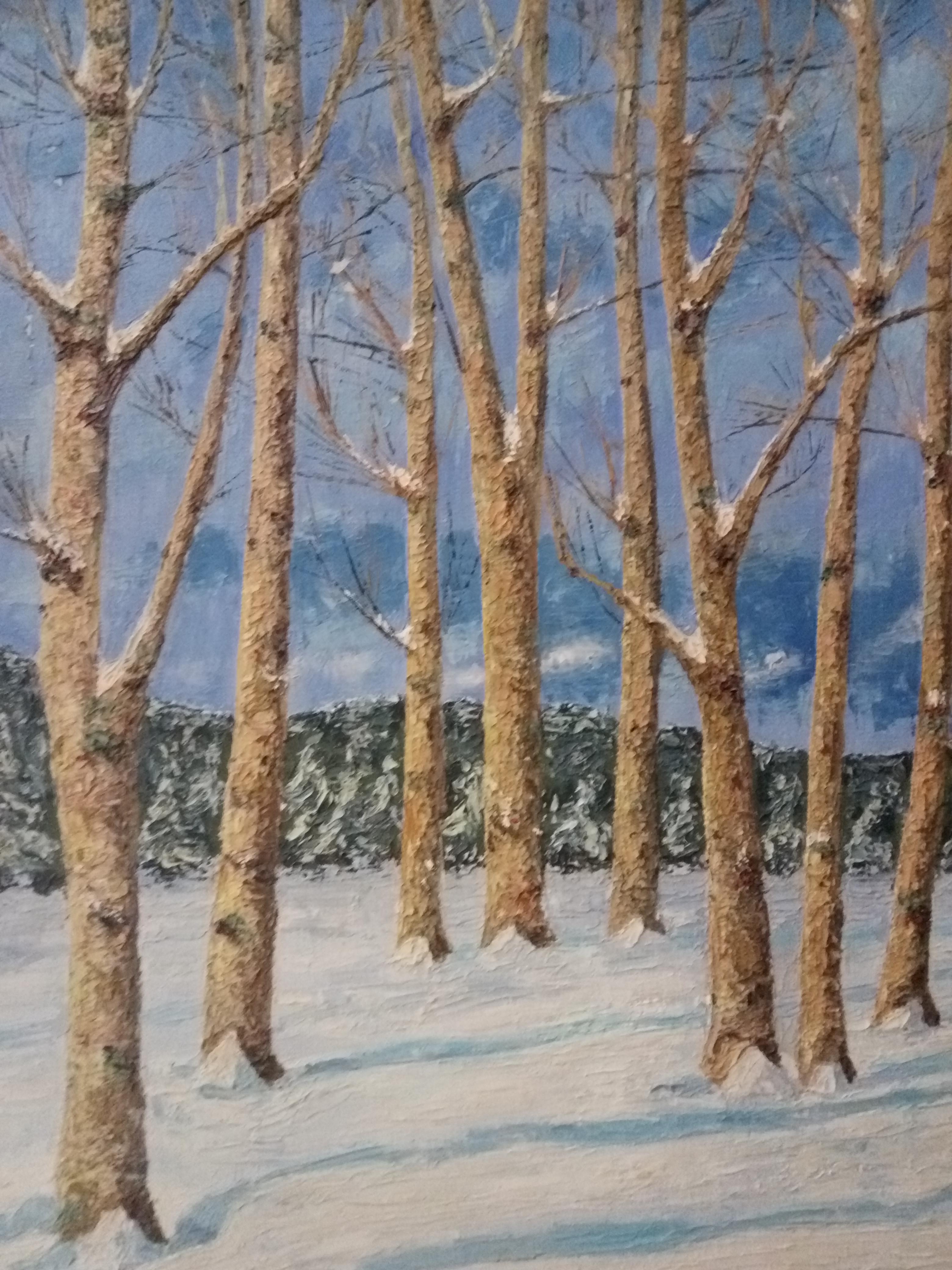 Un bosque de hoja caduca tras una nevada