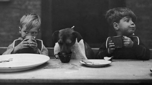 Dos niños y un perro sentados a una mesa bebiendo cada uno de una taza.  Fotografía de Mario Giacomelli