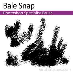 'Bale Snap' Photoshop Specialist Brush for digital artists