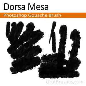 Dorsa-Mesa-Photoshop-Gouache-Brush