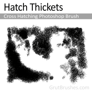 Artisanal cross Hatching Photoshop brush - Hatch Thickets