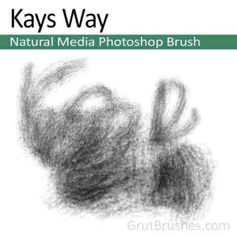 Kays-Way-Natural-Media-Photoshop-Brush