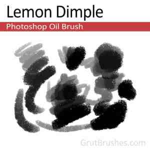 'Lemon Dimple' Photoshop Oil brush for digital artists
