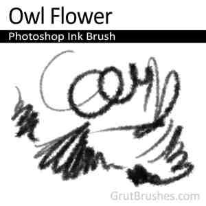 Owl Flower - Photoshop Ink Brush