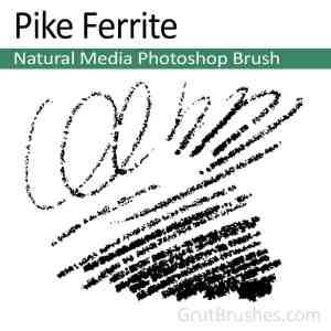 Pike-Ferrite-Natural-Media-Photoshop-Brush