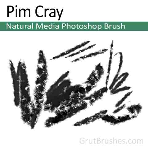 'Pim Cray' Photoshop Natural Media Brush for digital artists
