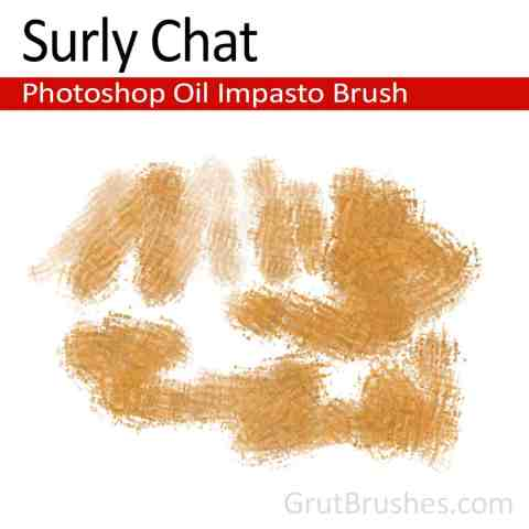 Photoshop Oil Impasto Brush for digital artists 'Surly Chat'