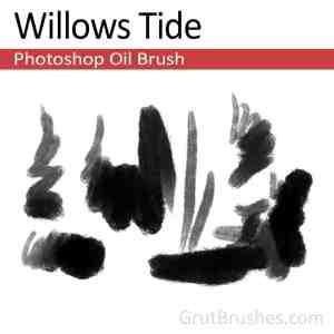 Digital oil paint brush for Photoshop