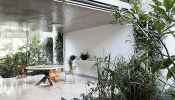 Urban jungle living room