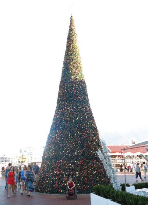41. Gry foran Waterfronts juletre (2)