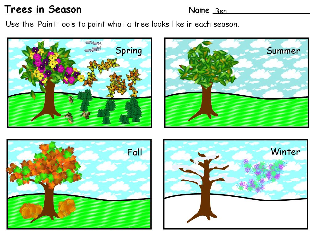 Trees In Seasons