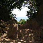 沖縄のパワースポット聖地である御嶽(うたき)の種類とアクセス方法