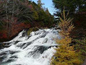 日光紅葉湯滝