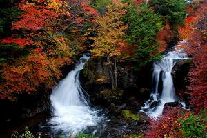 日光竜頭の滝紅葉1