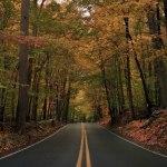 Автомобильные дороги мира (фото)