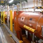 Большой адронный коллайдер был выведен из строя хорьком