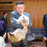 Японский губернатор рассказал о том, как живется коту, которого подарил ему Путин