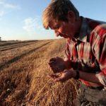 Помощник российских фермеров