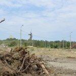 Мемориальный парк у подножия Мамаева кургана в Волгограде вырубили под стоянку для ЧМ-2018