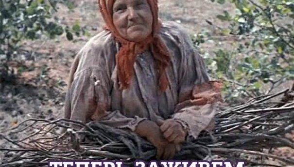 «Госдума разрешила гражданам собирать сухие ветки в лесу для своих нужд