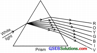 GSEB Solutions Class 10 Science Chapter 11 Human Eye and Colourful World