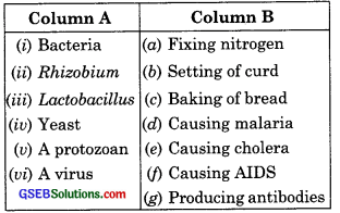 GSEB Solutions Class 8 Science Chapter 2 Microorganisms Friend and Foe