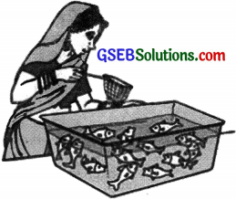 GSEB Solutions Class 10 Maths Chapter 15 Probability Ex 15.1