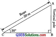 GSEB Solutions Class 10 Maths Chapter 9 Some Applications of Trigonometry Ex 9.1