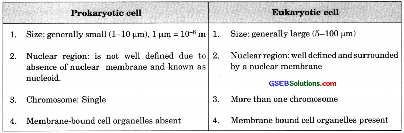 GSEB Solutions Class 9 Science Chapter 5 The Fundamental Unit of Life