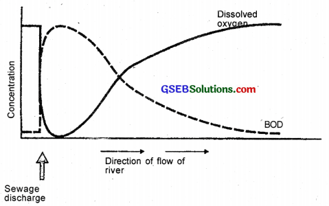 GSEB Solutions Class 12 Biology Chapter 16 Environmental Issues 4