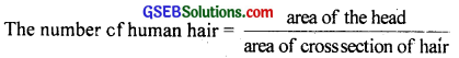 GSEB Solutions Class 11 Physics Chapter 2 Units and Measurements img 10