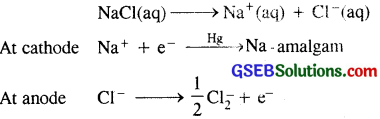 GSEB Solutions Class 11 Chemistry Chapter 10 The s-Block Elements 11
