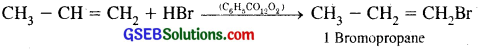 GSEB Solutions Class 11 Chemistry Chapter 13 Hydrocarbons 24
