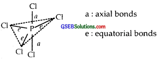GSEB Solutions Class 11 Chemistry Chapter 4 Chemical Bonding and Molecular Structure img 51