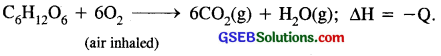 GSEB Solutions Class 11 Chemistry Chapter 9 Hydrogen 22