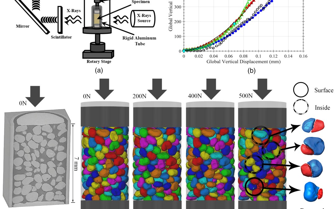 Influence of Sand Morphology on Interparticle Force and Stress Transmission Using Three-Dimensional Discrete- and Finite-Element Methods