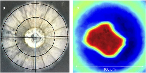 X-ray diffraction and equation of state of the C–S–H room-temperature superconductor