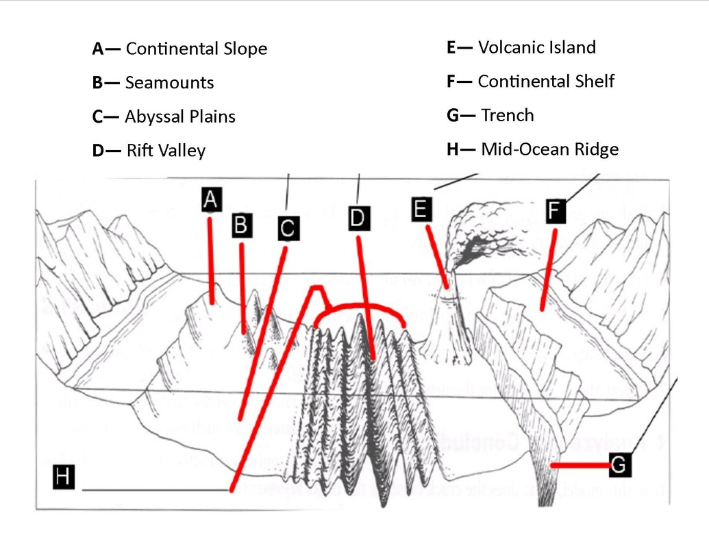 Gap Lesson C Features Of The Ocean Floor Dok 1 2