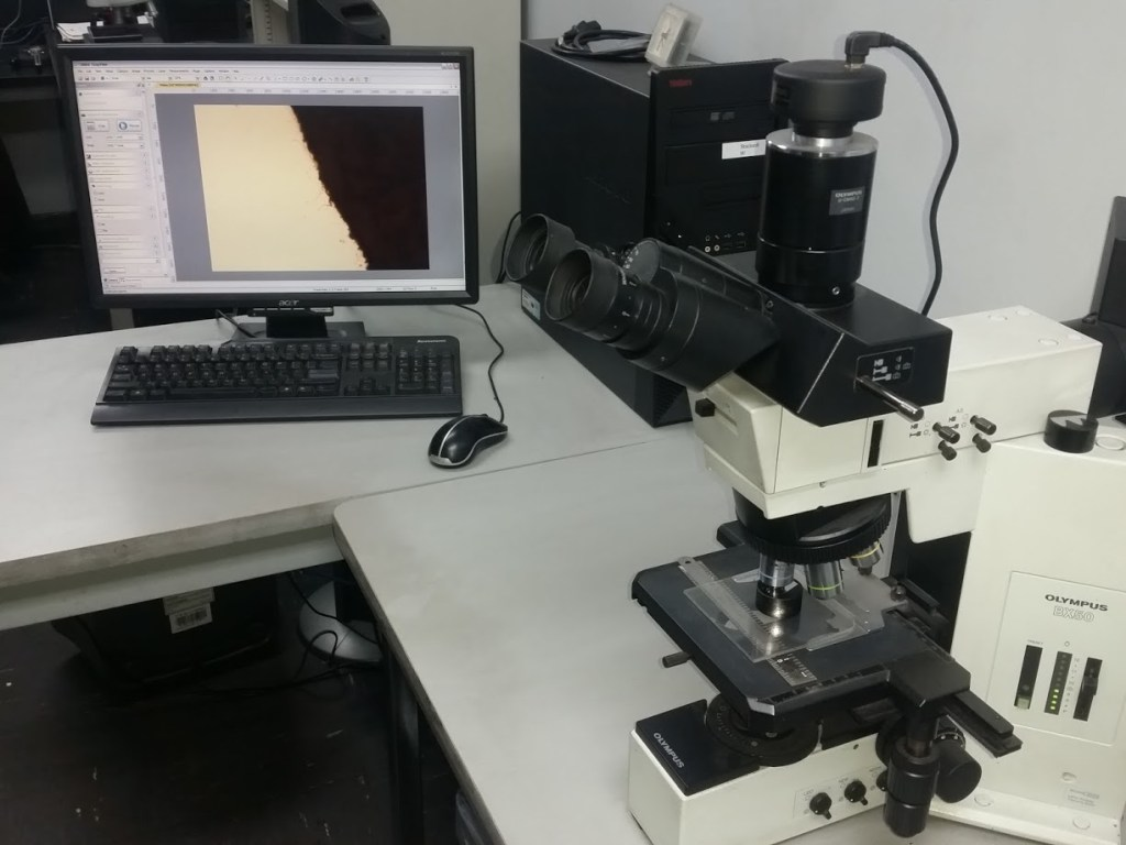Our Olympus microscope camera
