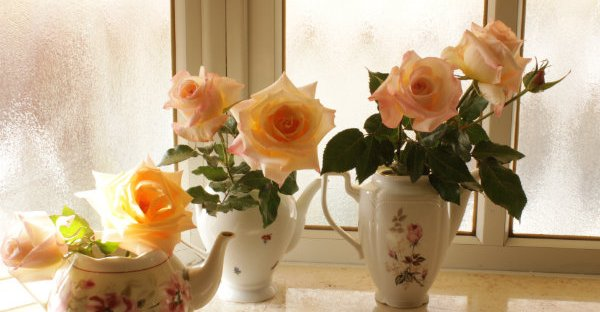 Roses in the vintage teapot