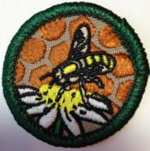 Honeybees, Mitten Bay