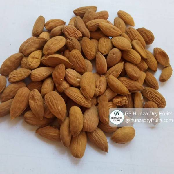 Healthy Almond Kernel By GS Hunza Dry Fruits