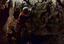 Monitoraggio chirotteri nella Grotta di Foggia Nuova
